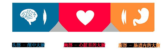 china-img-toogle-3cervelli-CHN